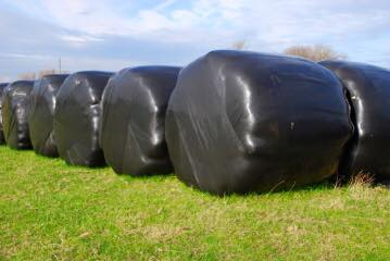 REDUCED RATES ON SILAGE WRAP DISPOSAL